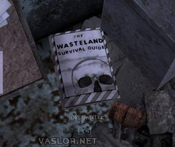 the_wasteland_survival_guide.jpg